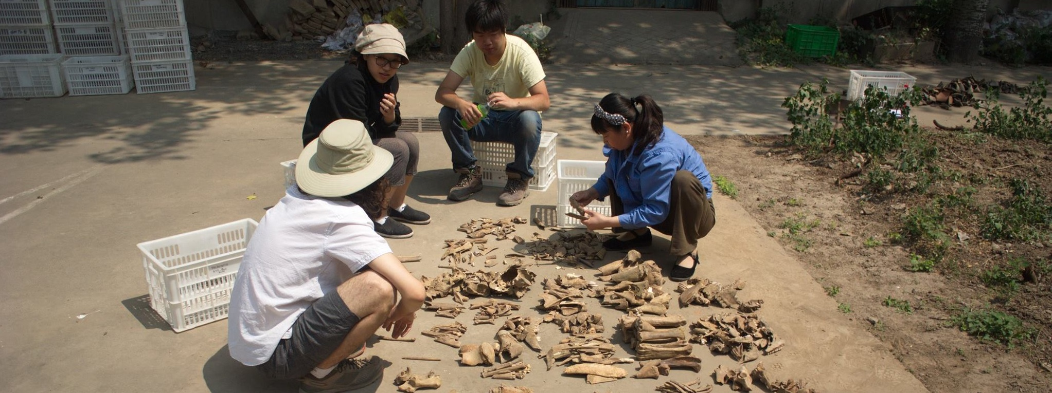 Archeology Anyang Field School 2016